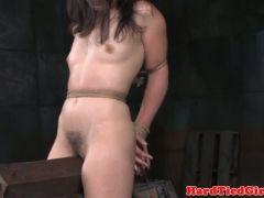 Bdsm slut spanked by the masters toys